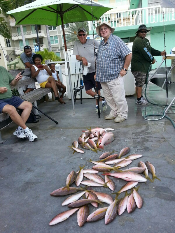 Wednesday, Sept 3, 2014 1-5 pm Yellowtail Snapper